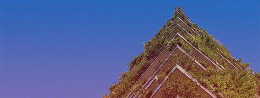 Groene obligaties: de weg naar een duurzame toekomst?