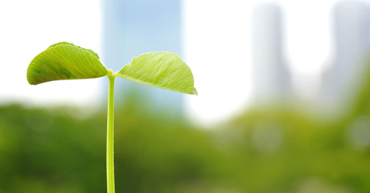 10 manieren om invulling te geven aan klimaatrisico management